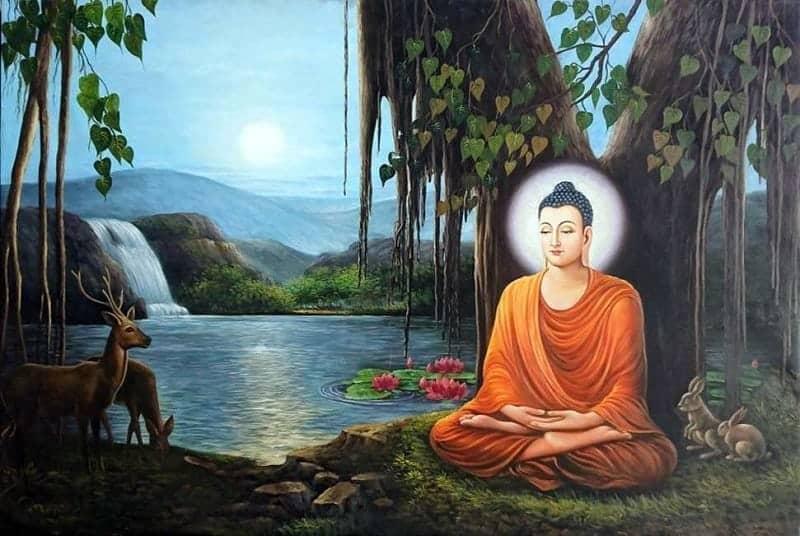 đức Phật thiền định dưới gốc cây bồ đề